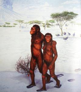Extrait d'un diaporama conçu par Ian Tattersall, montrant un attendrissant couple d'Australopithecus Afarensis – librement inspiré des traces de pas du site de Laetoli.